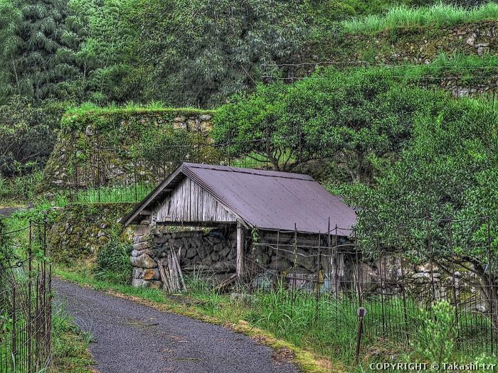 求菩提の農村景観2