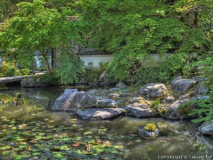 当麻寺中之坊庭園