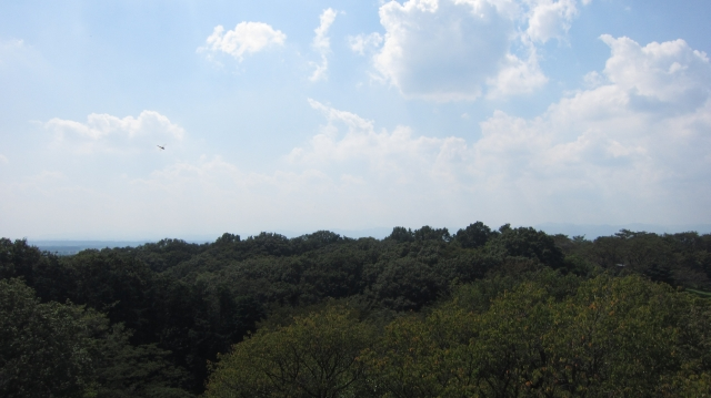 六道山展望台