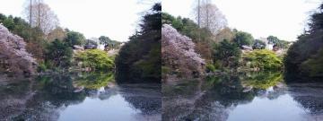 下の池 1