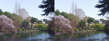 下の池 2