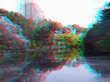 アナグリフ下の池 1