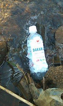 9月11日 川でダカラを冷やす_01