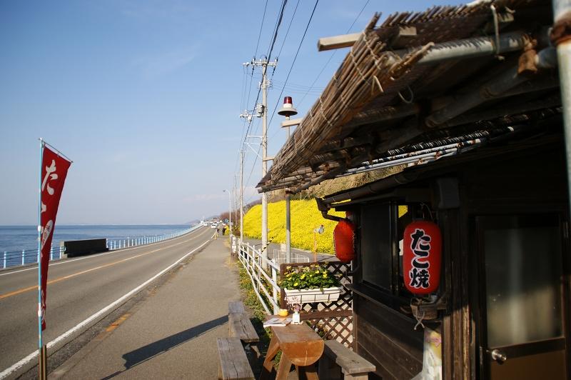 愛媛2011春 066