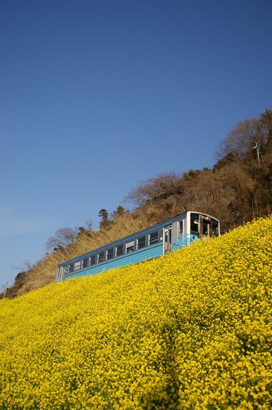愛媛2011春 073