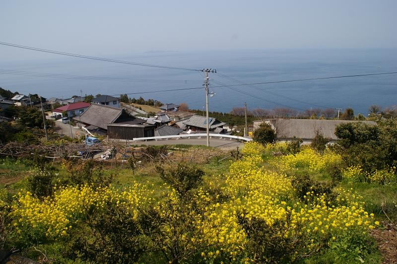 愛媛2011春 228