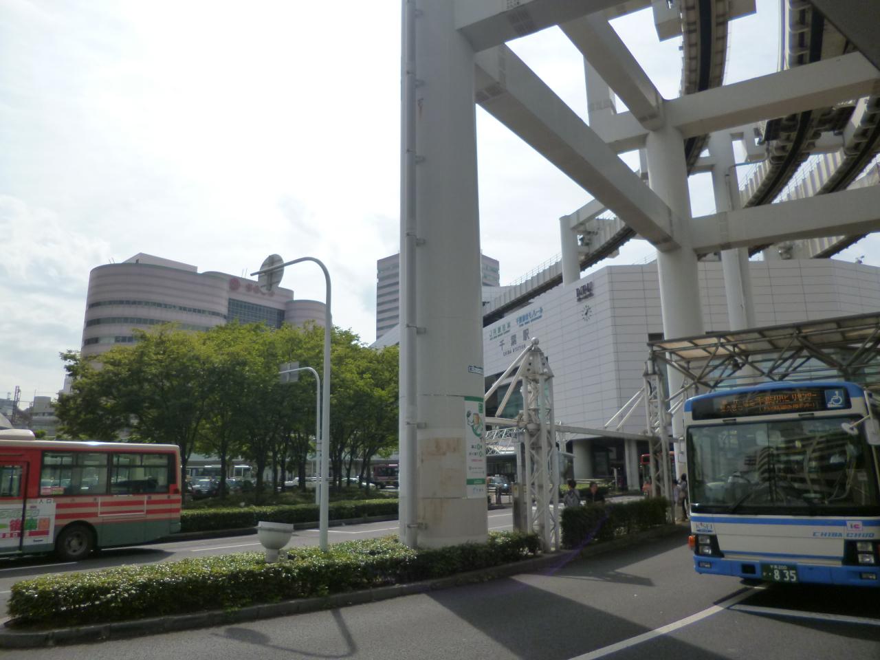 P1340978.jpg