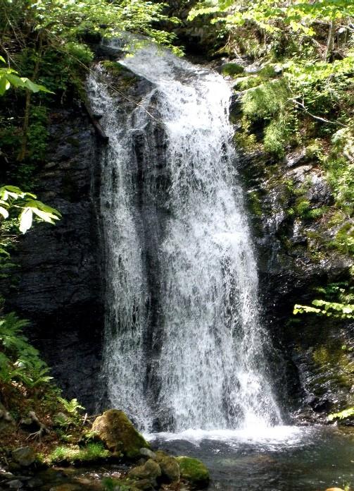 山田 田久里滝