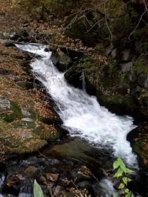 遠野 小烏瀬の滝