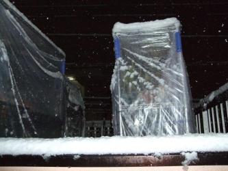 2011年2月14日!バレンタインデーは大雪景色~降り過ぎです!IN東京