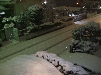 2011年2月14日!バレンタインデーは大雪景色~降り過ぎです!