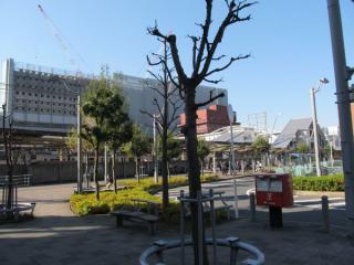 北口側からも建設中のビルを用意に確認できるサイズに「成長」した。
