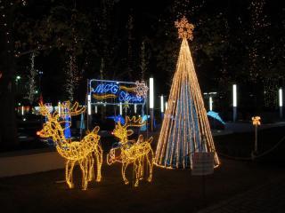 トナカイとクリスマスツリー