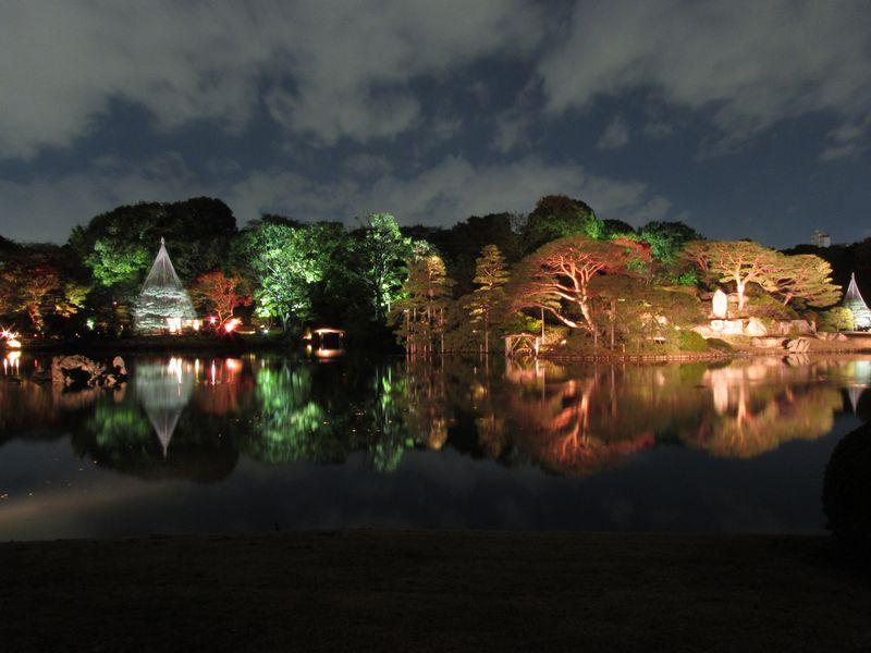 【クリックで拡大】六義園中央の中の島のライトアップ