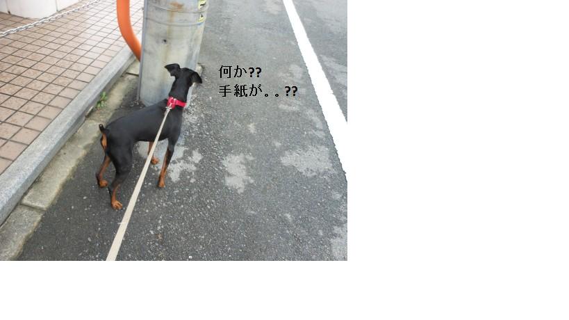 23.8.20 雨 (1)