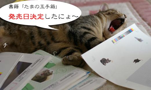 tyoko sakebuのコピー