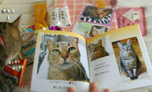 fotobukku85のコピー
