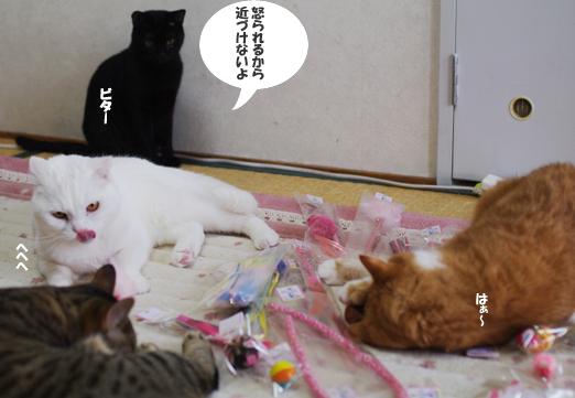 えrうぇrのコピー