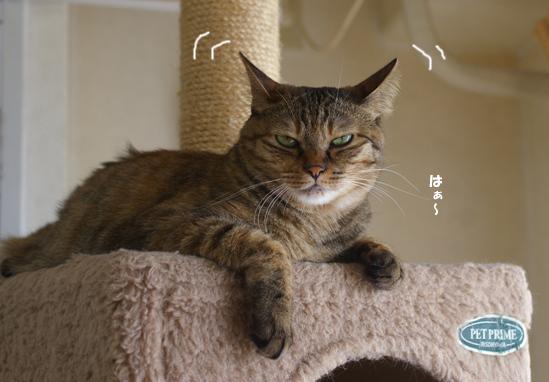 sagyouowattannadaコピー