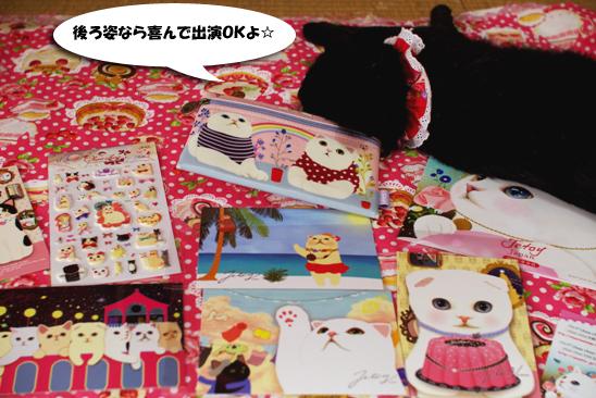 猫グッズとクーちゃん3コピー
