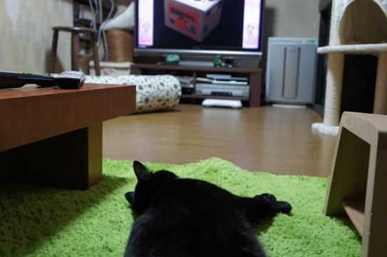 テレビを見るビーくん1111