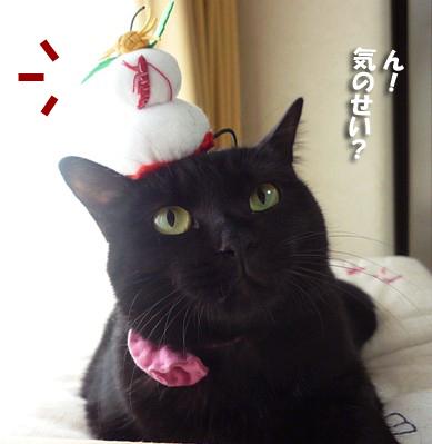 黒鏡餅5564645コピー