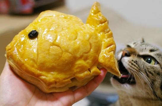アップル鯛チョコ