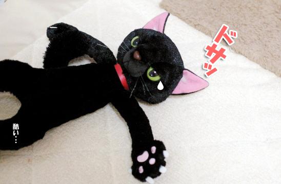 可哀相な黒猫ちゃん104040404のコピー