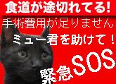 8f2d1bc4b68e6c11e47902cdc9aa1e78.jpg