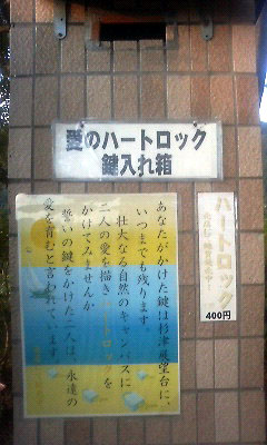 201107141846001.jpg