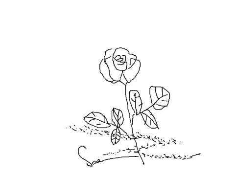 フリーハンド取りあえず薔薇