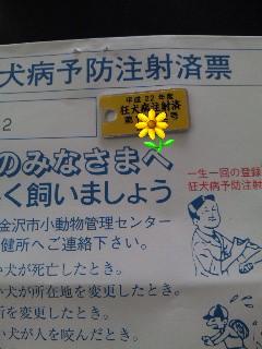 100419_123814_ed.jpg