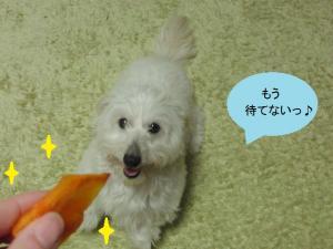 柿ジャンプ②
