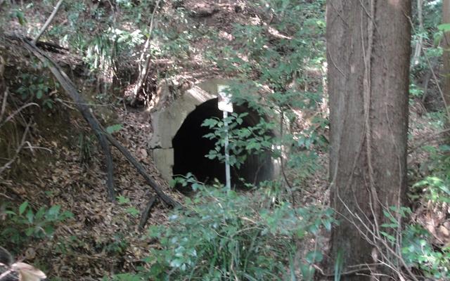 殿山トンネル5