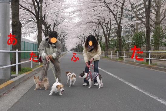 譯懶シ胆convert_20100409124939