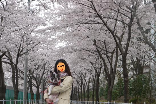 譯懶シ狙convert_20100409124622