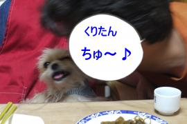 P1160384_convert_20100521122625.jpg
