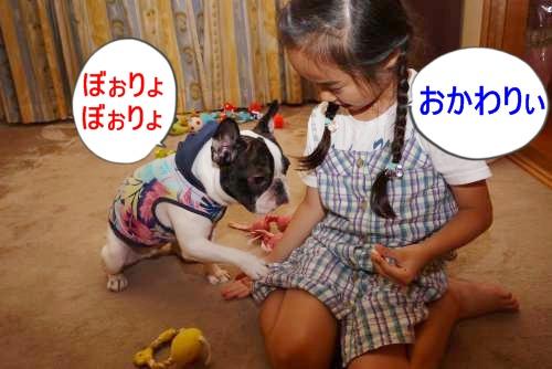 P1180670_convert_20100720112427.jpg