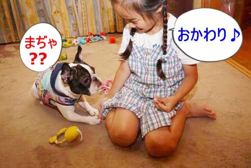 P1180674_convert_20100720112814.jpg