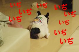 P1190092_convert_20100820154656.jpg
