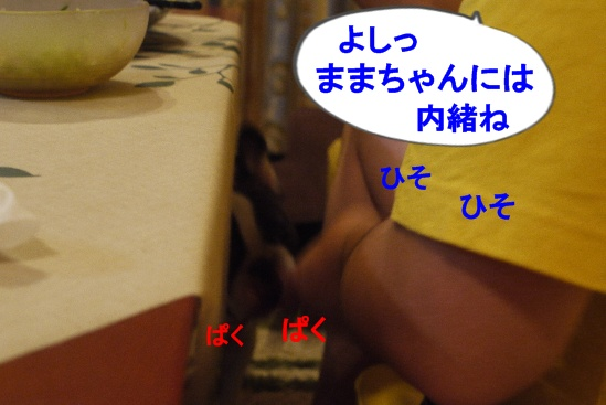 P1300466.jpg