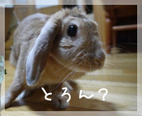 ごま摺り團子4