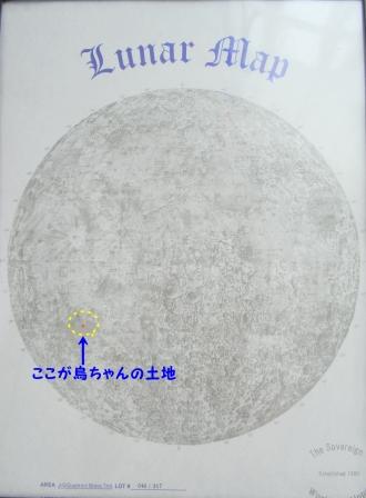 0814-11.jpg
