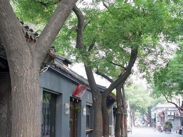 th_1109beijing_town03.jpg