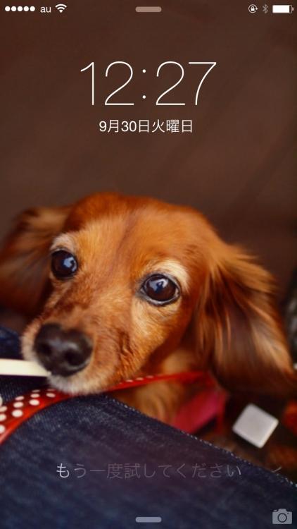 2014_10_ 1_20_19 (1)