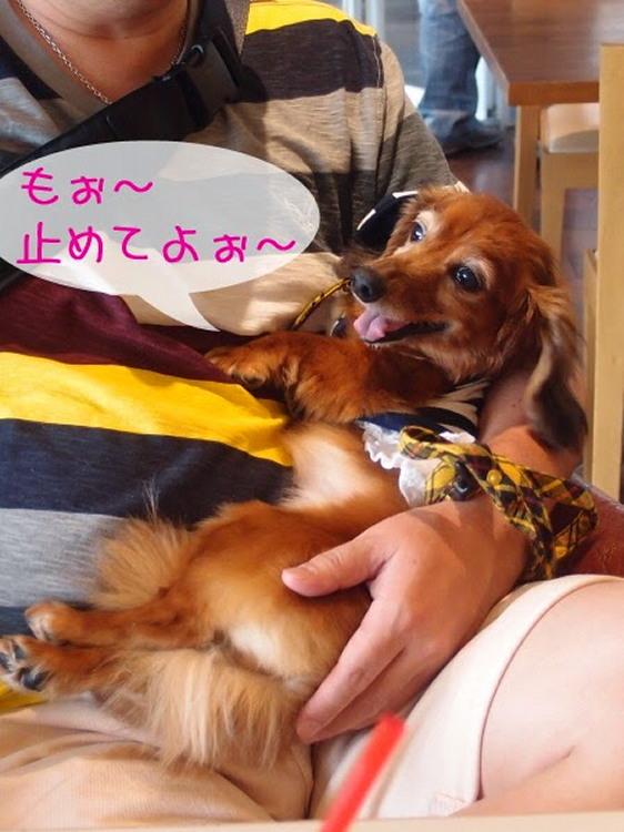 2014_ 9_21_21_47 (1)