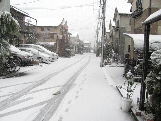 2013年1月14日大雪