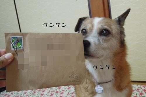 DSCN1487.jpg