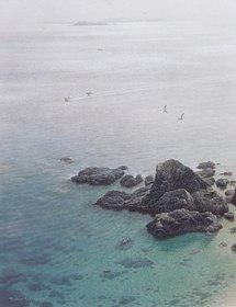 1998海(佐多岬10P1