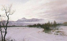 1988冬野(野辺山10M)1
